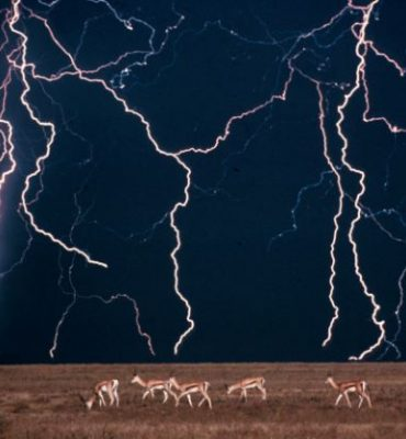 Lightning storms over Africa: The new technique would allow researchers to trigger rain and lightning storms on command by firing lasers into clouds Read more: http://www.dailymail.co.uk/sciencetech/article-2609818/The-laser-make-rain-Researchers-unveil-radical-start-storms-command.html#ixzz2zjO8pdMT Follow us: @MailOnline on Twitter | DailyMail on Facebook